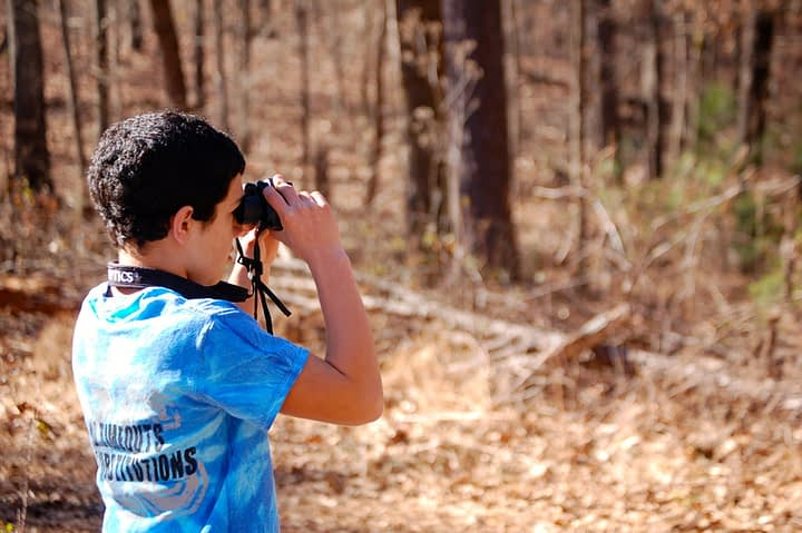 Boy bird watching