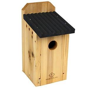 wildbirdcare cedar bluebird nesting box