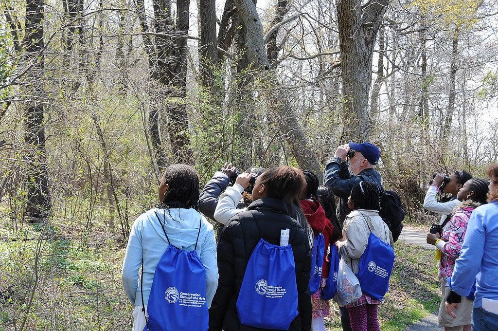 Getting Kids into Birdwatching – Birding for Children