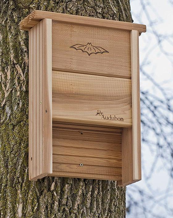 Audubon Cedar Bat Shelter Review – Backyard Bat Shelters